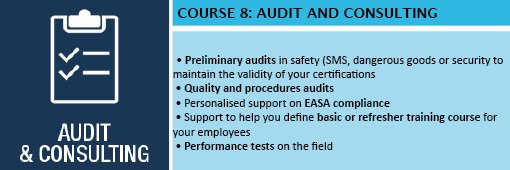 Training 8_Audit and Consulting